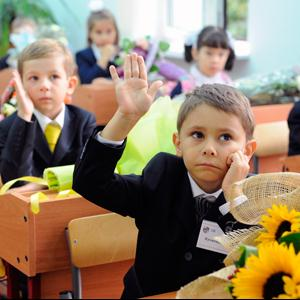 Школы Шумихи